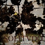 Solitvdo - Immerso in un Bosco di Querce